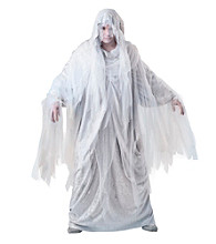 Haunting Spirit Adult Costume