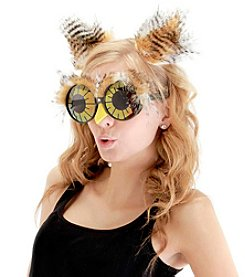 Owl Ears And Glasses Adult Accessory Kit