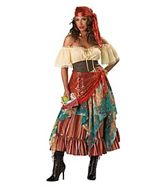 Fortune Teller Elite Collection Adult Costume