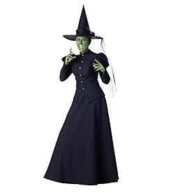 Wicked Witch Elite Collection Adult Costume