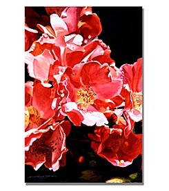 Trademark Fine Art Wild Roses Framed Art by David Lloyd Glover