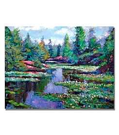 Trademark Fine Art Summer Waterlillies Framed Art by David Lloyd Glover