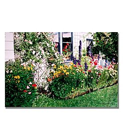 Trademark Fine Art The Tangled Garden Framed Art by David Lloyd Glover