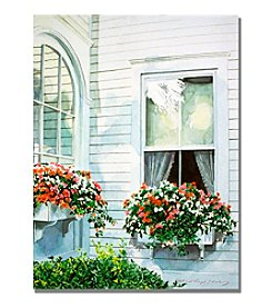 Trademark Fine Art Window Boxes Framed Art by David Lloyd Glover
