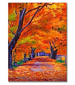 Trademark Fine Art Leafy Lane Framed Art by David Lloyd Glover
