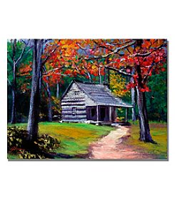 Trademark Fine Art Old Cabin Framed Art by David Lloyd Glover