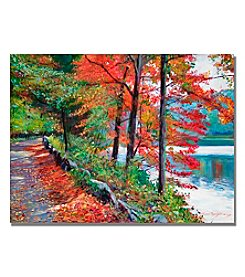 Trademark Fine Art Rockefeller Park Framed Art by David Lloyd Glover