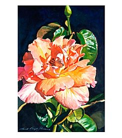 Trademark Fine Art Royal Rose Framed Art by David Lloyd Glover