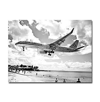 American Airliner Framed Art by Shelia Golden