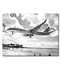 American Airliner Framed Art by Shelia Golden