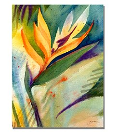 Trademark Fine Art Bird of Paradise Framed Art by Shelia Golden