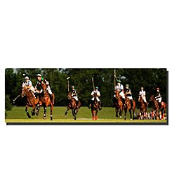 Trademark Fine Art USA Polo Framed Art by Preston