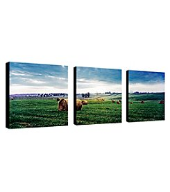 Trademark Fine Art Kentucky Sunrise I Set of 3 Framed Art by Preston
