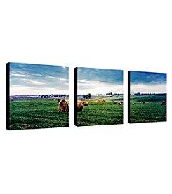 Trademark Fine Art Kentucky Sunrise I Set of 3 Framed Art by Preston