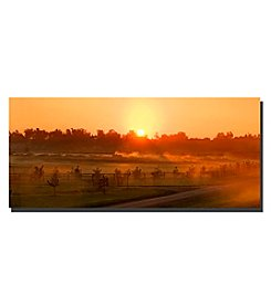 Trademark Fine Art Kentucky Sunrise 2 Framed Art by Preston