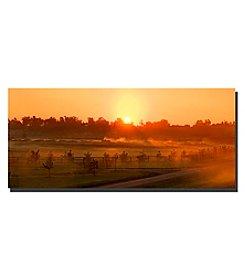 Trademark Fine Art Kentucky Sunrise 2 Framed Art by Preston