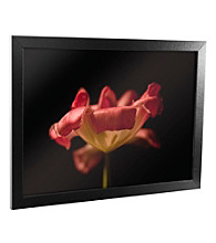 Tulip Canvas Framed Art