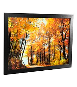 Trademark Fine Art 'Golden Days' Canvas Framed Art