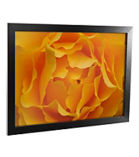 Hypnotic Yellow Rose Canvas Framed Art