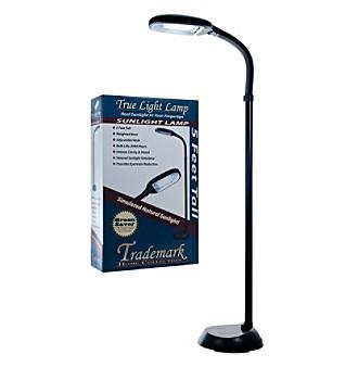 Trademark Home Collection Deluxe Sunlight Black Floor Lamp
