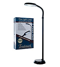 Trademark Home Collection Deluxe Sunlight Black Floor Lamp