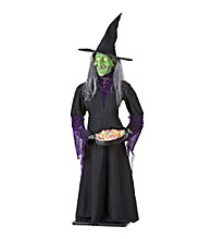5.5' Animated Airblown Life Size Witch