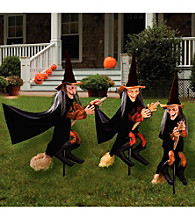 Set of 3 Witchly Group