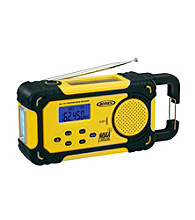 Jensen AM/FM Weather Band Radio with Weather Alert