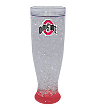 TNT Media Group Ohio State University Buckeyes Ice Pilsner Glass