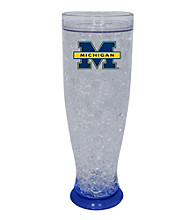 TNT Media Group University Of Michigan Wolverines Ice Pilsner Glass