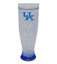 TNT Media Group University Of Kentucky Wildcats Ice Pilsner Glass