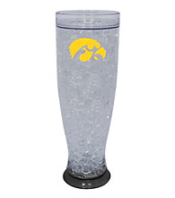 TNT Media Group University Of Iowa Hawkeyes Ice Pilsner Glass