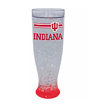 TNT Media Group University Of Indiana Hoosiers Ice Pilsner Glass