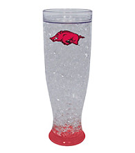 TNT Media Group University Of Arkansas Razorbacks Ice Pilsner Glass