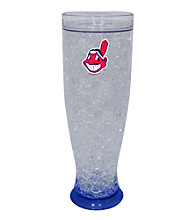 TNT Media Group Cleveland Indians Ice Pilsner Glass