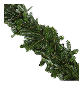The Christmas Tree Company 25-ft. Fresh Fraser Fir Premium Holiday Garland