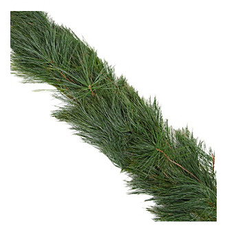 The Christmas Tree Company 25-ft. Fresh White Pine Premium Holiday Garland
