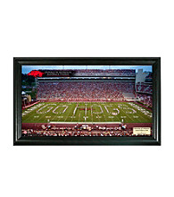 University of Arkansas Stadium Gridiron Photo by Highland Mint