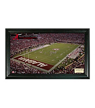 University of Alabama Stadium Gridiron Photo by Highland Mint