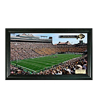 University of Colorado Stadium Gridiron Photo by Highland Mint
