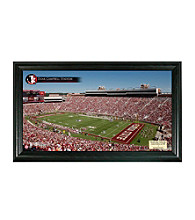 Florida State University Stadium Gridiron Photo by Highland Mint