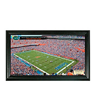 University of Florida Stadium Gridiron Photo by Highland Mint