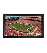 University of Georgia Stadium Gridiron Photo by Highland Mint