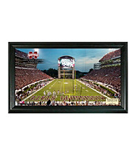 Mississippi State University Stadium Gridiron Photo by Highland Mint