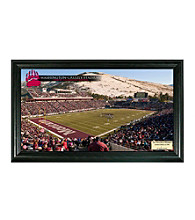 University of Montana Stadium Gridiron Photo by Highland Mint