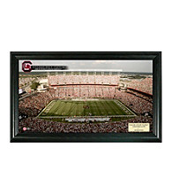 University of South Carolina Stadium Gridiron Photo by Highland Mint