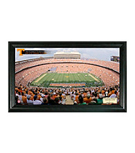 University of Tennessee (Football) Stadium Gridiron Photo by Highland Mint