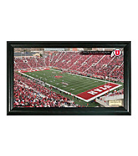 University of Utah Stadium Gridiron Photo by Highland Mint