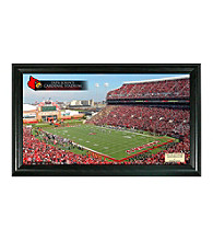 University of Louisville Stadium Gridiron Photo by Highland Mint