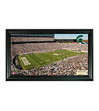 Michigan State University Stadium Gridiron Photo by Highland Mint